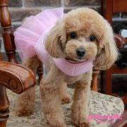pinkaholic_princesse-flirt-harness_naqa-ah7207-pink_04