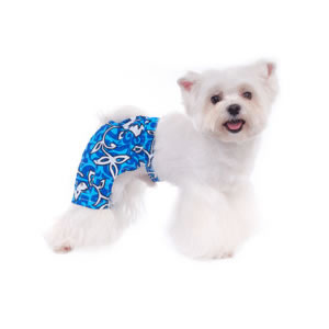 pooch-outfitters_malibu-swim-trunks-blue_pmst_02