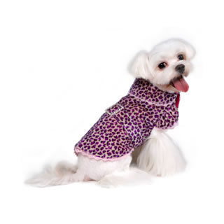 pooch-outfitters_roxie-city-coat_prcc_03