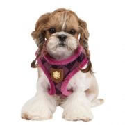 puppia_argyle-mode_harness-a_pald-ac916_purple_02