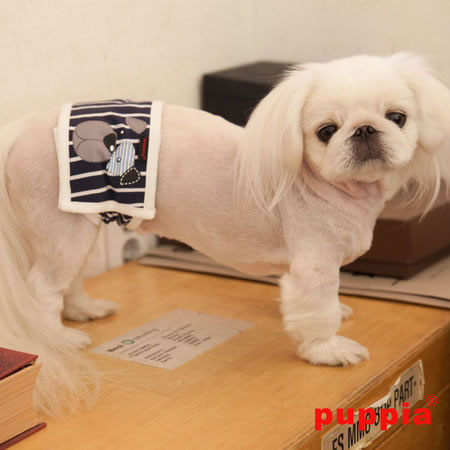 puppia_boomer-manner-band_paqa-mb1401-navy_04