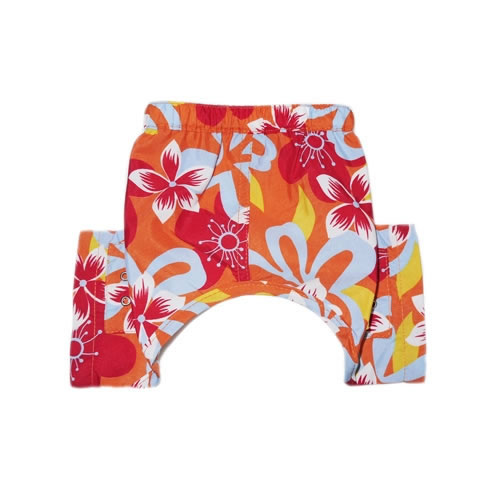 tasmania-swim-trunk-pooch-outfitters-costume