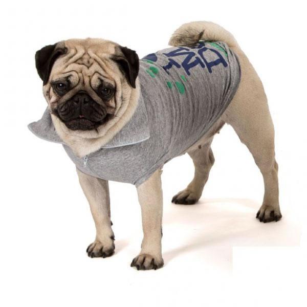 t-shirt-per-cani-highneck_oceano