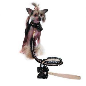 guinzaglio-per-cani-catherine-bis
