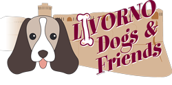 livorno-dogs-friends