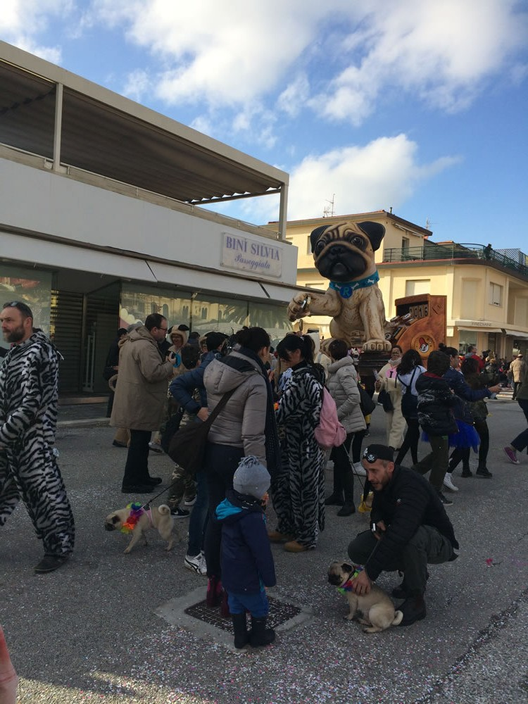 Il-resto-dal-Carlino-di-Rudy-Mazzone-Carnevale-di-Viareggio-2016-53-e1455541691901