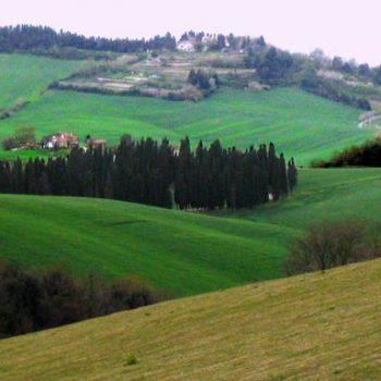 Panorama-delle-colline-di-Nugola