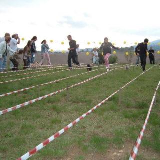 Ugopiadi 2004 - Le olimpiadi del cane carlino 001