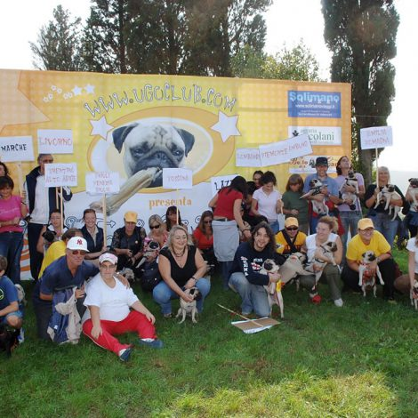 Ugopiadi 2005 - Le olimpiadi del cane carlino 011