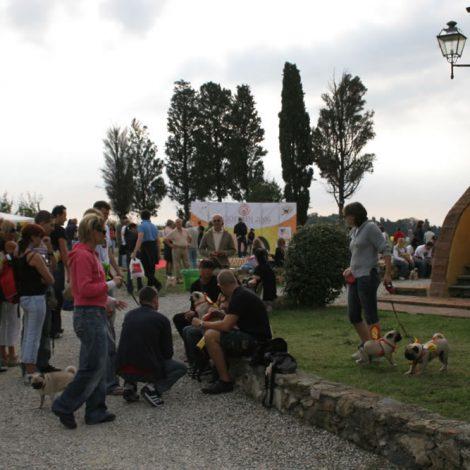 Ugopiadi-2006-I-giochi-del-cane-carlino-010