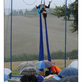 Ugopiadi-2009-I-giochi-del-cane-carlino-008